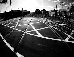 St Henri Tracks 4 (MassiveKontent) Tags: tracks lines black traintracks crossing pointsaintcharles montreal bw contrast city monochrome urban blackandwhite street photo montréal quebec photography bwphotography streetshot architecture asphalt concrete shadows noiretblanc blancoynegro geometric gopro fisheye