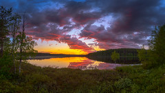 Tutulampi sunset (M.T.L Photography) Tags: tutulampisunset sunset water sky clouds mtlphotography mikkoleinonencom summer night bright nightless serene roadtokuusamo panoramicphotography grass pond trees forest nikond810