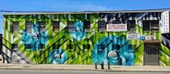 . (SA_Steve) Tags: bushwick bushwickbrooklyn brooklyn nyc urban streetart art mural creative city urbanart artinpublic publicart
