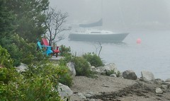 Great Weather for Photography (photo fiddler) Tags: prospectbay novascotia fog sailboat july 2018