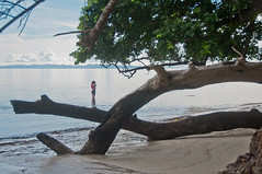 DSC_0191 (yakovina) Tags: silverseaexpeditions indonesia papua new guinea island auri islands