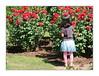 Au nom de la rose / Rose Garden - Portland (Oregon) (PtiteArvine) Tags: roses rosegarden portland oregon usa enfant fleurs couleurs rouge