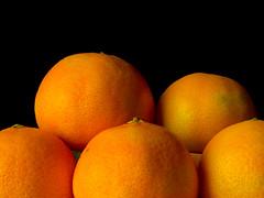 Oranges (Andy Sut) Tags: fruit stilllife food raw dessert macro studio kitchen justfruitseries oranges