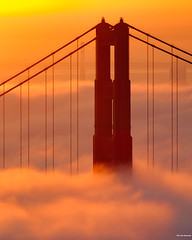 San Francisco Morning Fog (davidyuweb) Tags: san francisco morning fog sanfrancisco goldengatebridge bay bridge sunrise sfist luckysnapshot 三藩市
