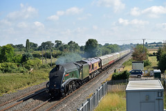 Union of South Africa and the Torbay Express (philwakely) Tags: a4pacific a4 lner 60009 unionofsouthafrica sirnigelgresley gresley class66 66106 mainlinesteam steam steamlocomotive steamtrains railtour cogloadjunction cogload diesel dieselmultipleunit