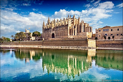 palma de mallorca (heavenuphere) Tags: palmademallorca palma mallorca majorca balearicislands islasbaleares spain espana island europe cathedral church palace palm tree water reflection 24105mm