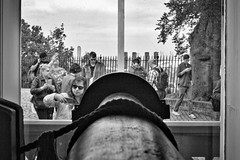 Where East meets West (@WineAlchemy1) Tags: royalobservatory greenwich london gmt time telescope primemeridian sirgeorgeairy longitude0° greenwichmeantime transitcircle selfies tourists blackwhite noiretblanc blackandwhite monochrome window eastmeetswest greenwichpark measurement clocks astronomy observation science mathematics