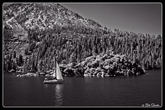 Fannette Island (PEN-F_Fan) Tags: microfourthirds mft m43 mirrorless raw photoborder photoedge photoframe olympus fannetteisland emeraldbaystatepark emeraldbay laketanoe penf mzuikodigitaled12100mmf40pro california teahouse blackandwhite monochrome filmlook monotone anselinthevalley preset postprocessing sailboat