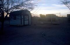 Sundown at the Little Ranch (squirtiesdad) Tags: hay barn corrals horse goat animals sunset tree diyfilmscanning selfdeveloped epson v600 film photography project fpp c41 analogue analog petri 7s rangefinder kodak ektar iso100 color negative 35mm