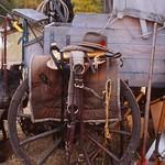 Wagon Wheel | South Dakota (1993) thumbnail