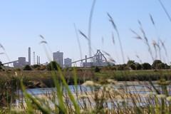 Among Those Dark Satanic Mills (oddbodd13) Tags: mill factory industry industrial teesside coatham marshes