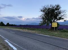 Sur la route des lavandes... (Nature Box) Tags: france valensole puimoisson lavandes champs montagnes routedeslavandes paysage provence parcnaturelrégional verdon
