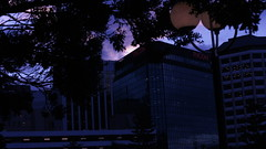 DSC06982 (A Common Courtesy) Tags: a common courtesy wellington auckland new zealand camera photo bw color black white day night monochrome bokeh sony nex 5a nex5a focuspeaking minolta mc pg 50mm 14rokkor fotodiox adapter