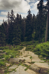 Babia Mountain (wanna be free to fly) Tags: babia babiagora babiamountain beskidzywiecki mountains diablak nature landscape earth powerofnature hikking travel path forest rocks weather clouds sky