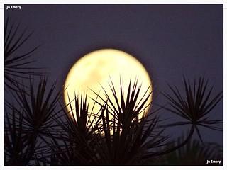 Lua / Moon