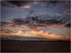 fading light of the day (andystones64) Tags: sunlight sunset sunlit clouds sky skywatching weather weatherwatch nature naturephotography photography image imageof imagecapture scunthorpe lincolnshire northlincs northlincolnshire nlincs countryside outdoors outside field farmland farming