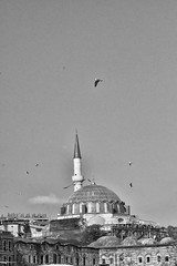LA MEZQUITA. (NIKONIANO) Tags: istambul turco turquía turismo travel europa asia turkish turk mezquita