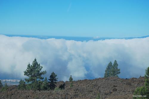 Понад хмарами, Тенеріфе, Канарські острови  InterNetri  008