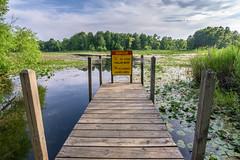 Michigan Lake (ruifo) Tags: nikon d810 sigma 20mm f14 dg hsm art lake lago laguna lagoa waterloo state recreation area michigan mi us usa america midwest great lakes