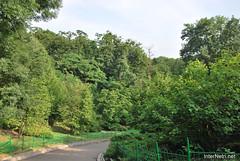 Київ, Ботанічний сад імені Фоміна Ukraine InterNetri 28