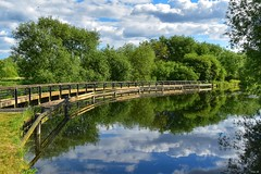 Longest day of the year for north of the equator, and it's a beautiful evening! (Nina_Ali) Tags: 7dwf watermeadpark leicester reflection nature landscape trees summer2018 nina ali ninaali