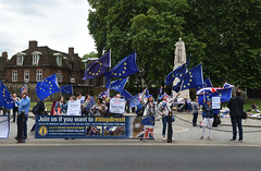 Img634690nxi_conv (veryamateurish) Tags: london westminster parliament housesofparliament abingdonstreet demonstration protest eu europeanunion brexit flags