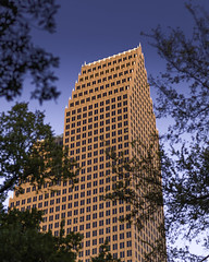 700 Louisiana (Alt) - Through Trees (Mabry Campbell) Tags: 700louisiana bankofamerica h5d50c hasselblad houston philipjohnson texas usa architecture bankofamericacenter blue building downtown image orange photo photograph f32 mabrycampbell october 2017 october282017 20171028campbellb0001604 80mm ¹⁄₁₂₅sec 100 hc80 fav10