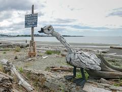 Esquimalt Lagoon June 15 2018 (roncasual) Tags: victoria esquimaltlagoon driftwood sculptures