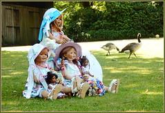 Kindergartenkinder und glückliche Gänse ... (Kindergartenkinder 2018) Tags: kindergartenkinder tivi sanrike annemoni leleti