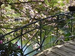 Impressionistic (m_artijn) Tags: florida park pond blossom tree railing bridge bergen norway