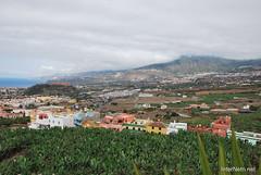 Гарачіко, Тенеріфе, Канарські острови  InterNetri  025