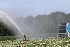 If the rain does not come, then, artificial! (excellentzebu1050) Tags: artificial fieldwork farm crops crop spraying maize potatoes farmwork fields coth5 sunrays5