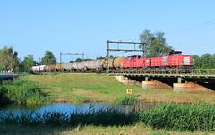 DB Cargo 6508+6455-6461 @ Zwolle (Sicco Dierdorp) Tags: db dbc cargo serie6400 vlaamsereus geelgrijs geel unitcargo ketelwagen keteltrein omgeleid ijssellijn deventer zwolle herfte meppel brug wetering