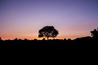 Sunset on Dartmoor National Park, Devon