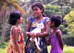 FRIENDLY (Suman Kalyan Biswas) Tags: street mammals love children friends chakdaha portraiture expression outdoor kid goat animallovers caring play emotion nature face smile fun streetphotography candidphotography ruralculture incredibleindia childhood portrait ruralindia kids people happiness westbengal india