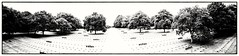 La Cambe - German WW2 Cemetery, Normandy (Andy J Newman) Tags: france military monochrome om panoramic blackandwhite cemetery cross dday germany grave headstone normandy olympus panorama silverefex lacambe normandie fr