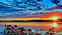 Floral Sunset (Bob's Digital Eye) Tags: bobsdigitaleye canon clouds efs24mmf28stm flicker flickr flowers july2018 laquintaessenza lake lakesunsets lakescape reflections silhouette sky skyscape sun sunset sunsetsoverwater t3i water