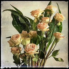 Memories (TAWPhotoArtistry) Tags: roses vintage bouquet