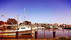 Boat docks across from Arby's Restaurant, Wenona, MD (delmarvausa) Tags: dealisland somersetcounty easternshore delmarva somersetcountymd dealislandmaryland delmarvapeninsula marylandseasternshore dealislandmd wenona wenonamaryland