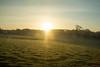 Commute's sunrise. (Azariel01) Tags: 2018 belgique belgium linbebeek holleken speed vitesse train commute morning sunrise levédesoleil matin champs fields soleil sun sunflares printemps spring