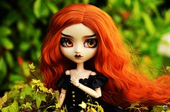 Flamboyance (Chantepierre) Tags: pullip doll fc fullcusto full custo custom chantepierre ladicius dark goth witch
