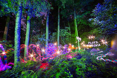 Tagging the Location (tackyshack) Tags: light painting lightpainting longexposure lightjunkie gels rhododendrons magilight leds flares ferns oneexposure lightpainter lightphotography lp tackyshack ©jeremyjackson