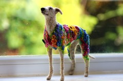 flowerbomb galgo 017 (adore62) Tags: flowerbombgalgo feltedfido felteddog needlefelteddog needlefelted embroidered embroidery flowerbomb