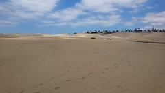 Maspalomas Dunes (Explored) (skumroffe) Tags: maspalomasdunes dunasdemaspalomas maspalomas dunes dunas sanddyner sanddunes sand grancanaria canaryislands islascanarias spain spanien españa kanarieöarna