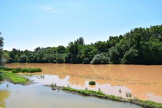 Río Ebro (Logroño, La Rioja, España, 8-7-2018)