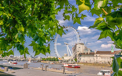 London Eye (Dhina A) Tags: sony a7rii ilce7rm2 a7r2 a7r fe 24105mm f4 sonyfe24105mmf4 zoom lens bokeh sharp london eye thames river ferris wheel south bank sel24105g