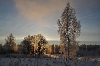 A ray of sunshine and frosty morning / Солнечный луч морозным утром