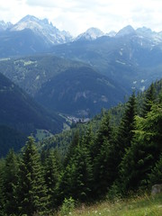 P7085430 (btristan) Tags: valdifiemme predazzo trentino lagorai gardonè mountain trees