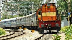 Dual ALCo headed KING KK !! (sriguru05) Tags: railfanning trainspotting railroad railfan indianrailways karnatakaexpress karnataka pune alco alcotwins wdm3d chugging acceleration bangalore newdelhi
