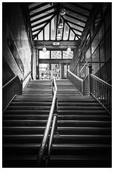 _DSC5788-Mr (gillesporlier) Tags: subway train exit sortie mononchrome boston nikon landscape enrivonnement bnw bw nb noiretblanc blackandwhite city ville metro dark sombre